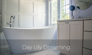 Day Lily Dreaming bathroom remodel